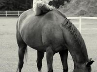 Living vicariously though my board... collection of awesome shots, my dream horses, and my childhood.