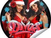 Sexy: WWE Wrestling Divas and Knockouts TNA WCW ECW