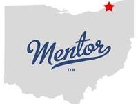 Get Mentor Mitsubishi