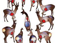Be A Better Deer Hunter