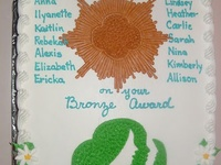 1000 Images About Girl Scout Bronze Award Ideas On