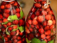 Any food preserving.