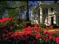 With the second largest historic district in the state and the largest collection of 19th century architecture in the state you will be amazed at the beautiful homes and gardens spanning the the last 200 years!