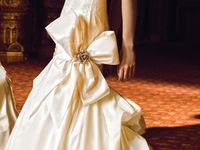 Weddings & Bows