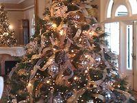 CHRISTMAS TREE'S SIMPLY GORGEOUS
