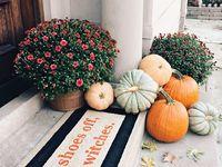 Autumn  Board