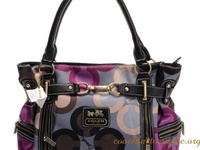 Hand Bags & Purses