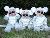 14 Best Three Blind Mice Images On Pinterest Shrek