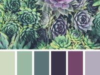 Colours and moodboards