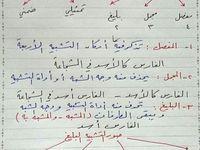 دراسة وتعليم