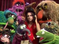 The Muppets And Guests