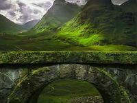 The Homeland, Ireland