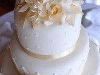 Cake Confections
