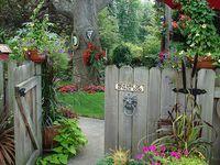 200+ Garden ideas   garden, outdoor gardens, garden inspiration