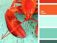 1000 Images About Color Combinations On Pinterest Color Palettes