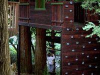 Treehouse Designs