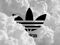 Adidas/kicks / Three Stripes Forever
