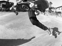 Sk8/Surf/Snowboard