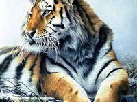 Animal Totems in Art 2