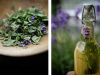 Health & Nature's Remedies