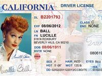 Idahoans Can Now Renew Driver S Licenses Online Drivers License