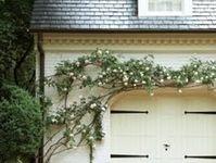 Gardening/ Outdoor Decorating Ideas