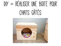 les 58 meilleures images propos de pour mes doudous chats sur pinterest bacs liti re pour. Black Bedroom Furniture Sets. Home Design Ideas