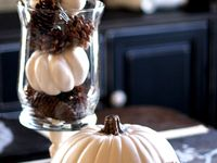 A collection of decor, crafts, DIY projects, and food that celebrate the fall season.
