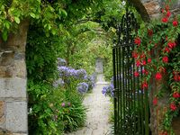 Garden gates, arbors, or just a hole in the fence that gets you from one garden room to another.