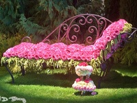 Gardening, Planters & Outdoor Spaces