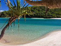 Gold Coast Natural Beauty