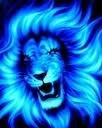 leos rule!