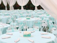 Tiffany Blue Wedding Decor!