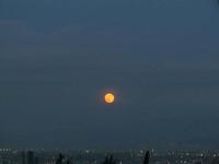 Luna / Moon / Un tributo a la señora de la noche con sus mejores imágenes.