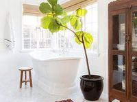 Bathroom / The most beautiful bathroom ideas