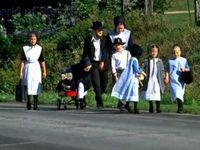 Amish/Mennonite
