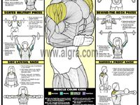 Muscle Exercises