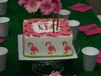 mp birthday :-)