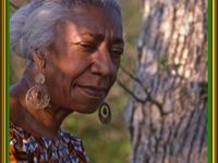 ... Edna Lewis Recipes!! on Pinterest | Lane cake, Shrimp grits and Fried