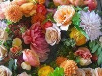 Entertaining - Floral, Greenery, Fruit