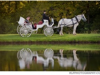 Twin Cedar Farm Fairytale Weddings!