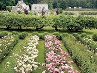 Gaga for garden designs