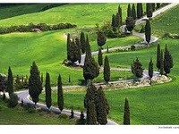 This Is Where Erica S Story All Happens The Amazing Val D Orcia