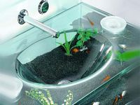 Fish Tanks On Pinterest Glass Floor Tables And Cool Fish Tanks