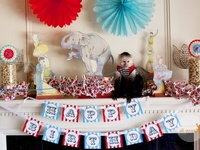Circus Carnival Theme Party