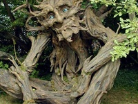 Awesome Tree Arts