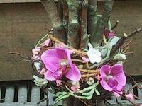 dekoracje z drzewa