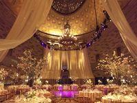 Wedding/Party
