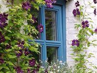 Flower & Garden Arts
