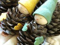 pine cones acorns chestnuts